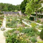 Indre et Loire : le jardin de curé de Chédigny vous fait rêver !