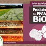 Un guide pour s'installer en tant que producteur(trice) de plantes à parfum, aromatiques et médicinales