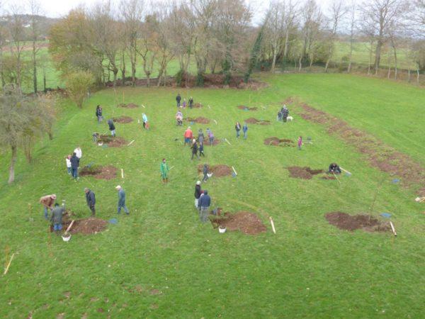 Une cinquantaine d'habitants a planté 15 arbres financés par la commune
