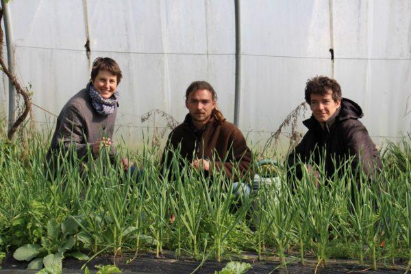 En Normandie, Rhizome accueille les porteurs de projets agricoles
