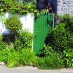 Et si on jardinait la rue ?
