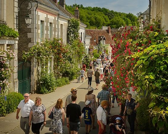 Chédigny, capitale des roses