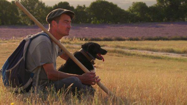 Une autre relation avec les animaux d'élevage démontrée dans ce film.