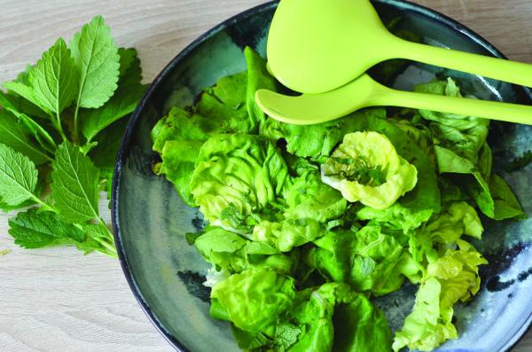 La mélisse, délicieuse en salade