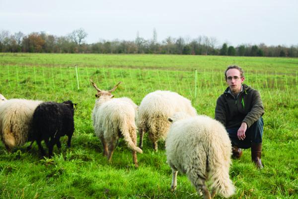 William Mallet a créé son activité d'éco-pâturage au sud-ouest de Nantes.