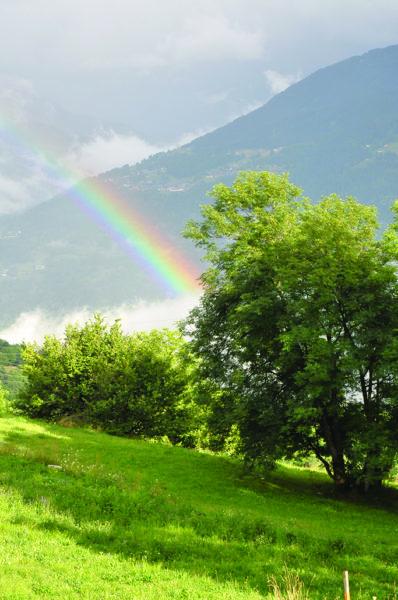 Instaler une station météo dans son jardin : rien de plus simple !