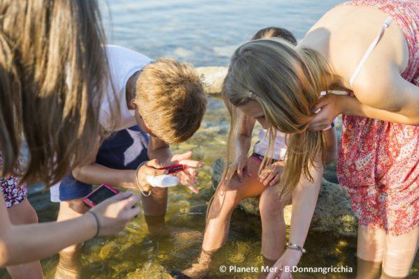 Des ateliers participatifs en ligne pour sensibiliser les enfants scolarisés à la biodiversité