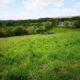 Propriété de 7 hectares avec source en pleine nature
