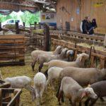Insee : De moins en moins d'agriculteurs