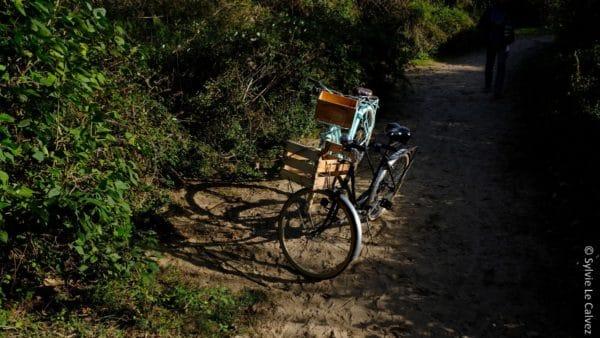 En ville comme à la campagne, le nombre de passages à vélo a augmenté de 30 % par rapport à la même période en 2019.