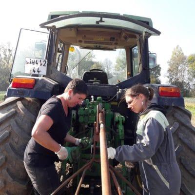 Les tâches accomplies au sein des couples d'exploitants agricoles se répartissent généralement de manière équitable mais le revenu mensuel des femmes est inférieur de 20% à celui des hommes