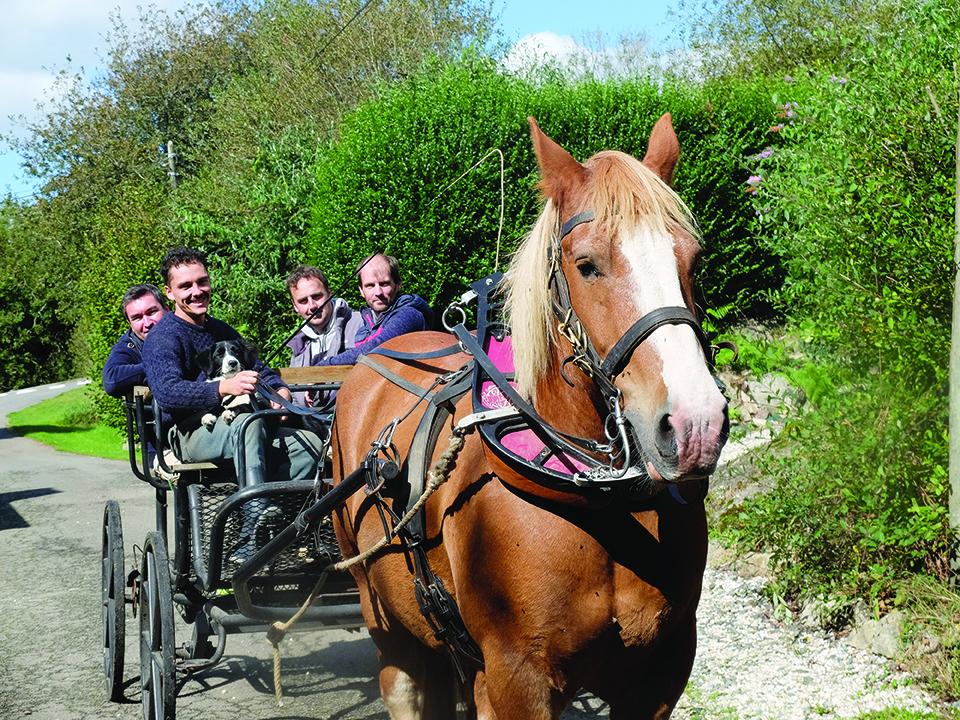 En Bretagne intérieure, une ferme a retrouvé une seconde vie : Mickaël Charmeil, ancien pharmacien, en a fait le lieu de son retour à la terre.