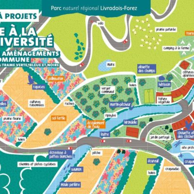 Place à la biodiversité autour du parc Livradois-Forez