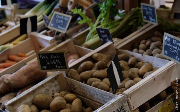 La Fondation Léa Nature / Jardin BiO lance un nouvel appel à projets pour stimuler et accélérer la transition des territoires en matière agricole et alimentaire.