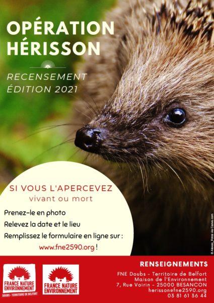 Une opération de recensement du hérisson sur tout le territoire français