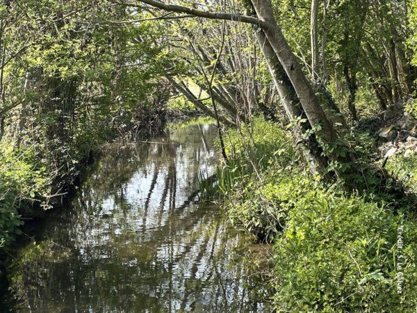L'appel à projets Territoires à Agricultures Positives est lancé dans le Bassin Adour-Garonne avec un budget d'1 M€.
