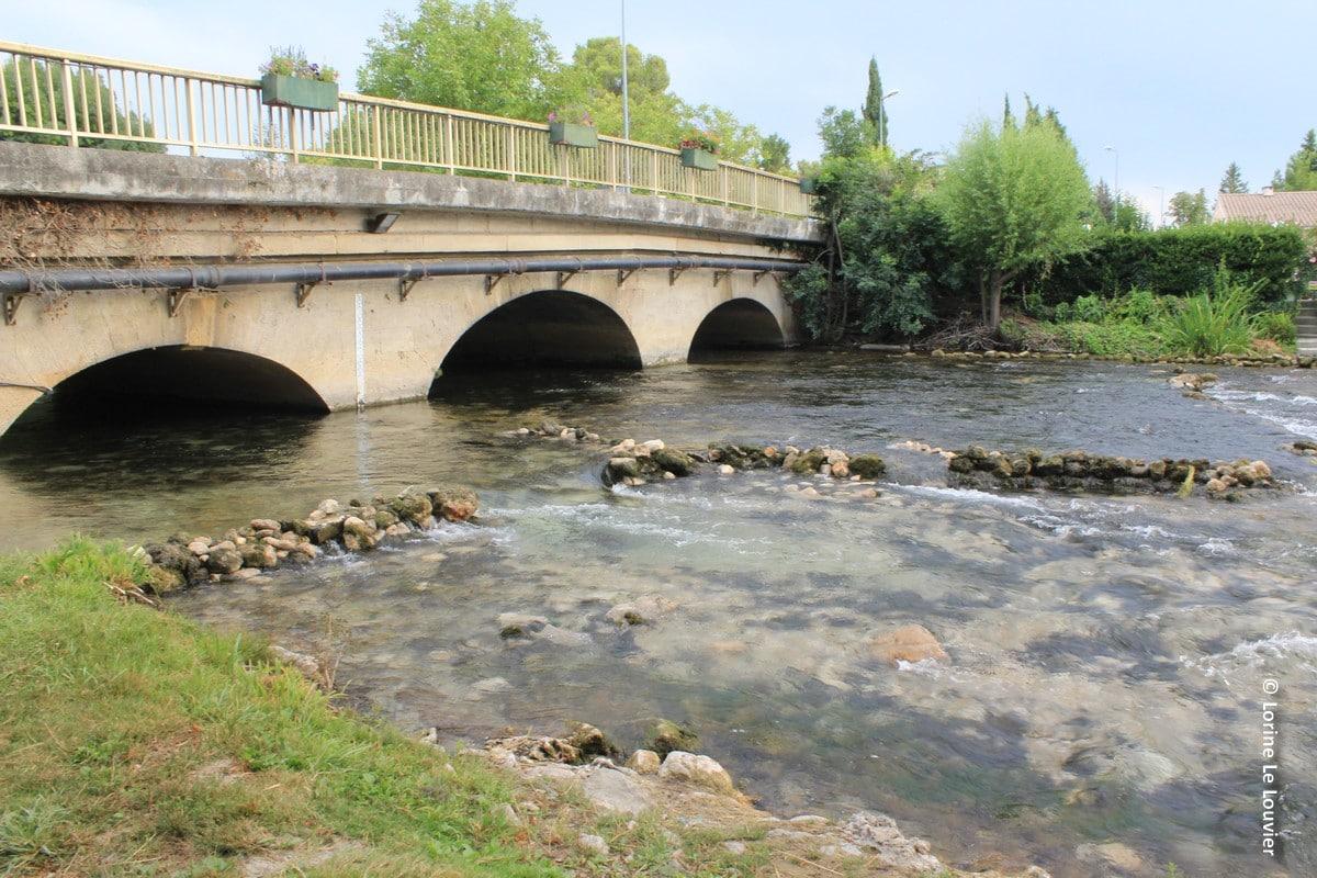 Plongez-vous dans les podcasts réalisés par les Agences de l'eau sur les rivières des régions.